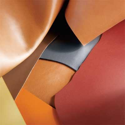 comment retirer de la moisissure sur du cuir. Black Bedroom Furniture Sets. Home Design Ideas