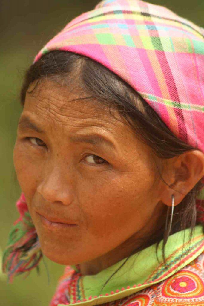 hmong fleurs du vietnam